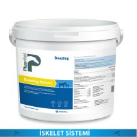 BREEDING ROBUST 4 KG (İSKELET SİSTEMİ)