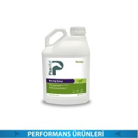 PLUS VİTAL RACİNG SYRUP 2 LİTRE (PERFORMANS ÜRÜNLERİ)