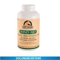 WIND AID FEED 946 ML (SOLUNUM SİSTEMİ)